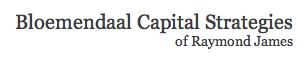 bloemendaal capital strategies